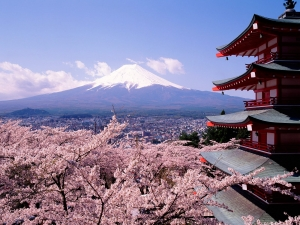Fuji_Japan_-_Cherry_Blossoms_and_Mount