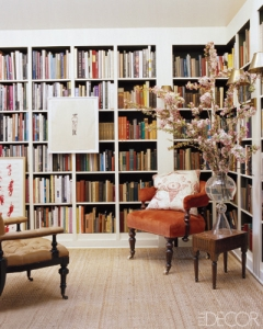 big-plant-in-library