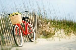 bike-rides1