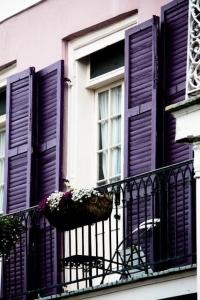 purple-shutters