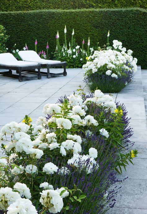 Laura Casey Interiors Garden 2